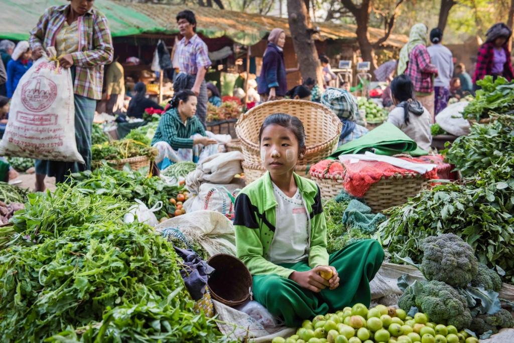 17_02_Burma-Feb_1298-774-1024x684